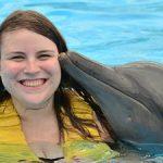 golfinho2